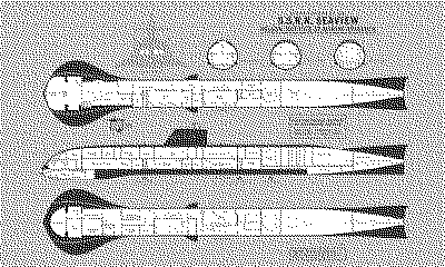 Seaview Deck Plan Int.png